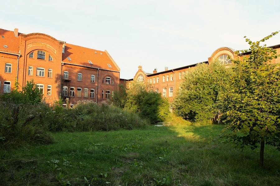 Die Puppenfabrik (V)