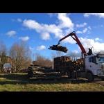 Anlieferung Buchenstämme für die Holzwoche