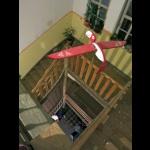 Vögel im hinteren Treppenhaus