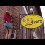 Spatz-Schild
